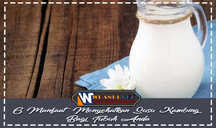 6 Manfaat Menyehatkan Susu Kambing Bagi Tubuh Anda