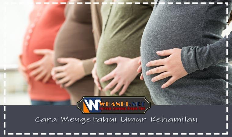 Cara Mengetahui Umur Kehamilan