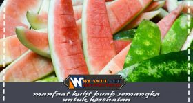 manfaat kulit semangka untuk kesehatan