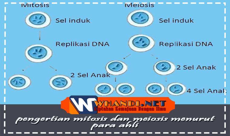 pengertian mitosis dan meiosis menurut para ahli